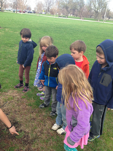 Three and four year olds and kindergarteners go on a walk outside to think about plants in relation to שמיטה (Sh'mitah-release).