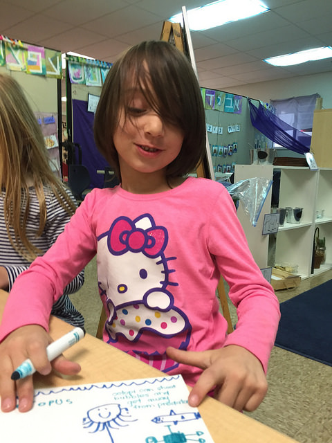 Writing and drawing about amazing octopi.